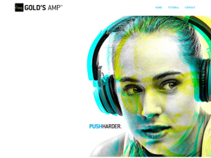 Gold's Amp Online Fitness Service